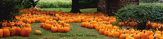 Header of this blog, 1 October through 10 November 2014.