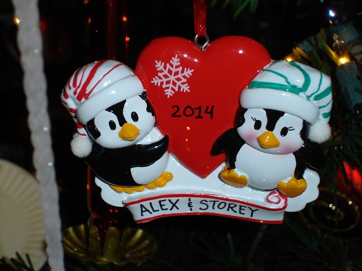 A new ornament that Alex's aunt got for us.